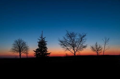2020 canon5dmarkiv hamilton sunrise ontario canada imga7574e bluehour sky trees