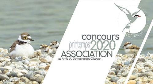 "Concours ""printemps 2020"" - Association LADDDO"