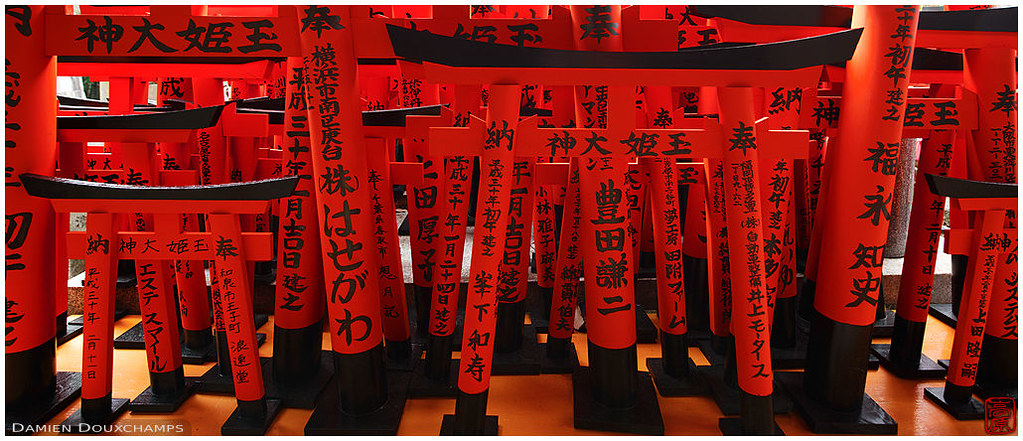 Torii offerings in Fushimi Inari shrine, Kyoto, Japan