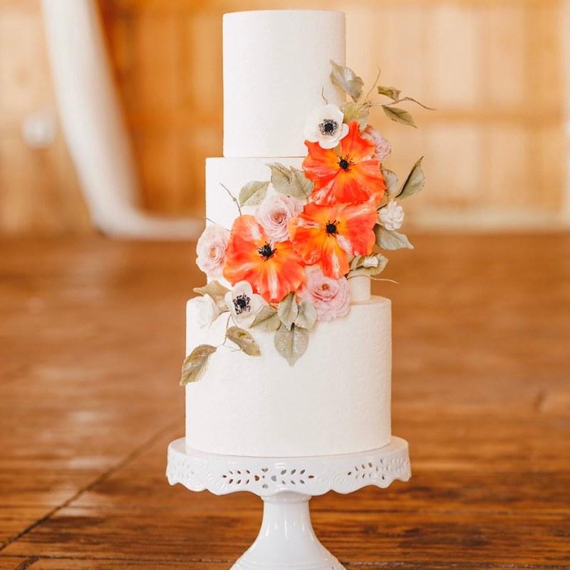 Cake by Jane's Sugar Magnolia