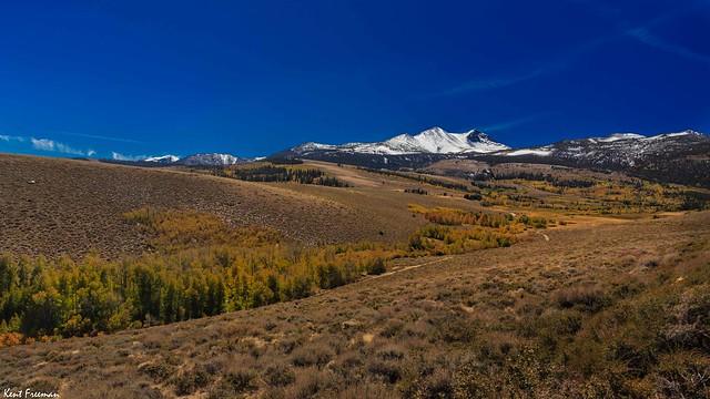 Fall Colors Dunderberg Meadows