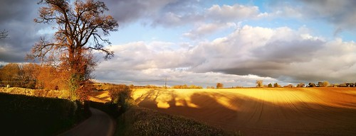 sunset nature fields golden welwyn hertfordshire whitehill shadows clouds home counties panorama huaweimobile visitherts