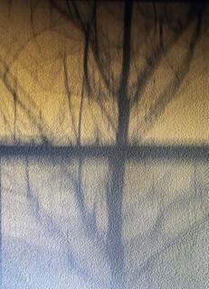 Wall Shadow at Sunrise