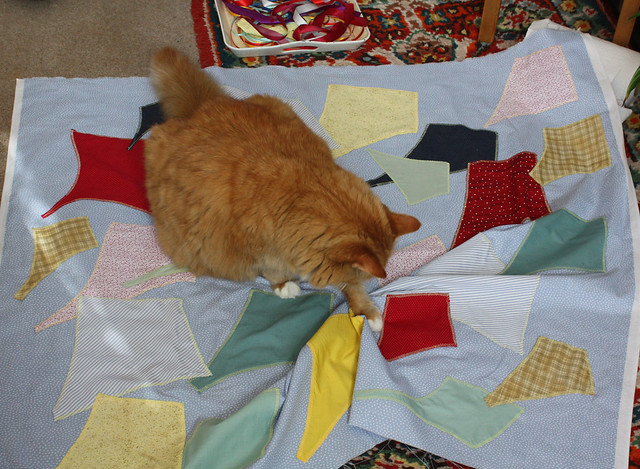 4.4.2020 Ginger inspecting the quilt (1)