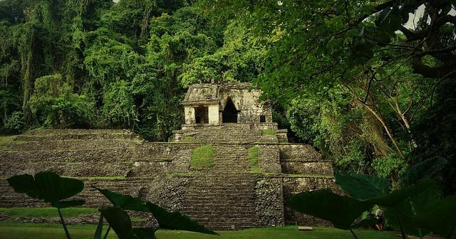 MEXICO, Historisches Highlight - die Mayastätte Palenque , 19638/12542