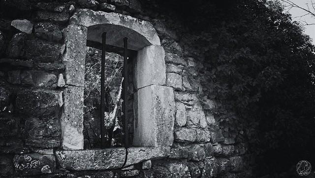 France - Ardèche - Dans la garrigue ...