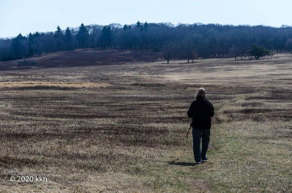 Walk across the meadow