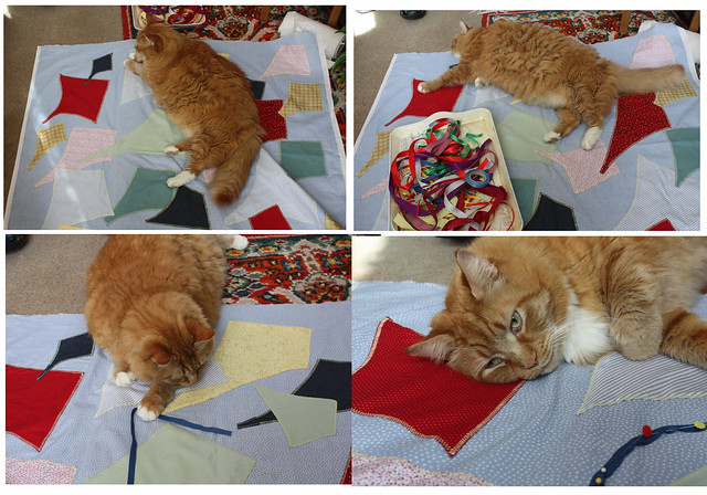 Ginger and the quilt