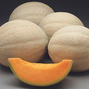 fruit cantaloupe hannah's choice heirloom