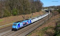 186 941 LTE (Attracktive Forces) / DGS 48779 Amsterdam Westhaven - Gratwein Gratkorn