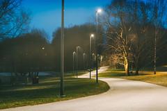 Park at night | Panevėžys