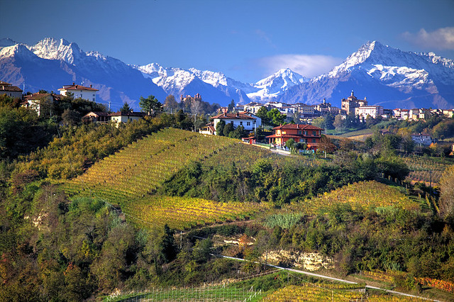 Autumn in Piedmont