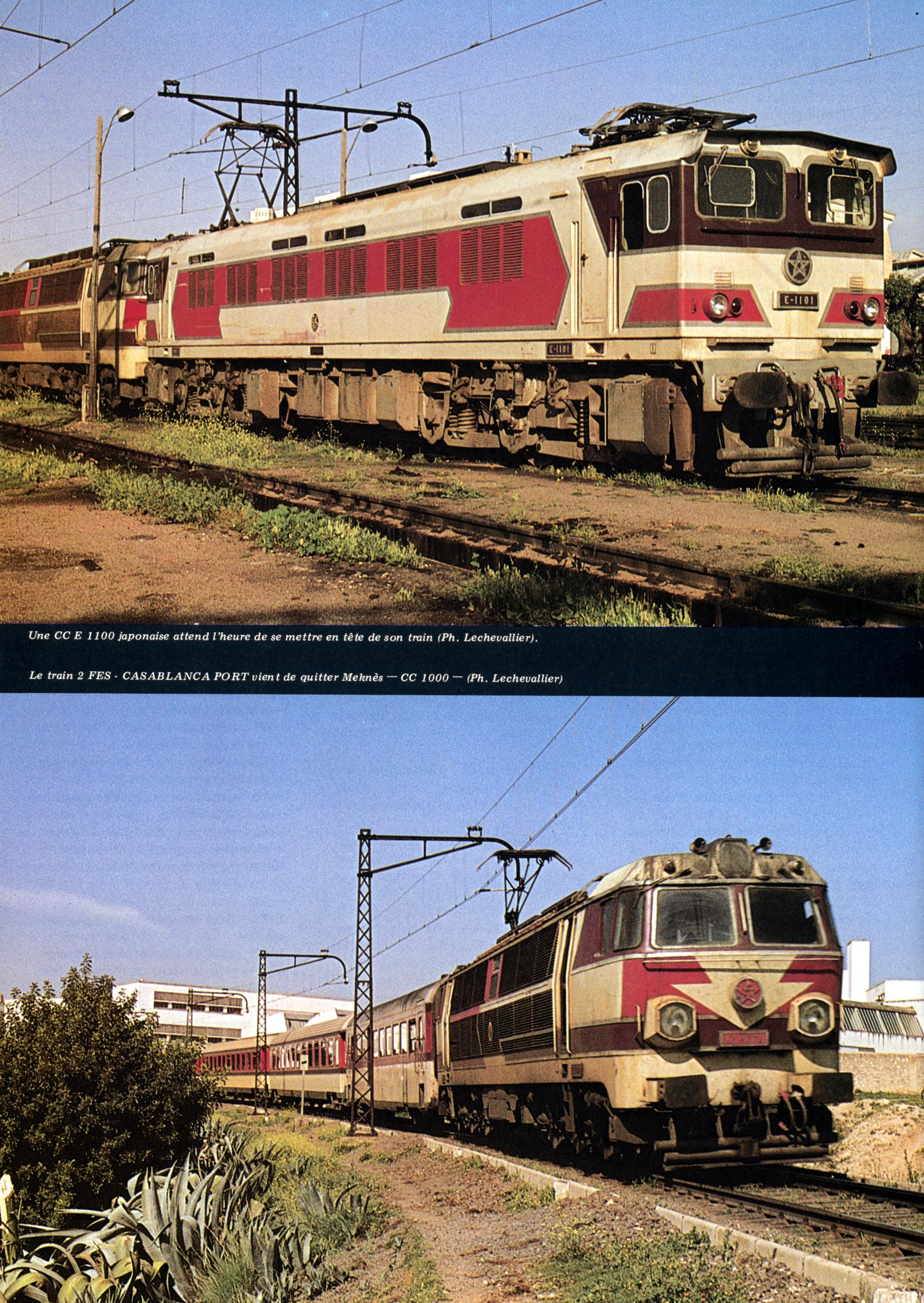 Chemins de Fer au Maroc - ONCF  - Page 4 49737028337_cd1b4bed4e_o_d