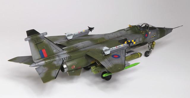 Jaguar_004