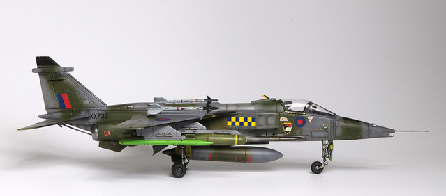 Jaguar_003