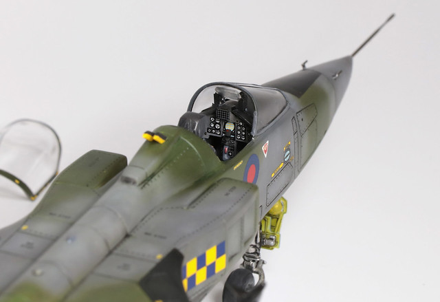 Jaguar_006