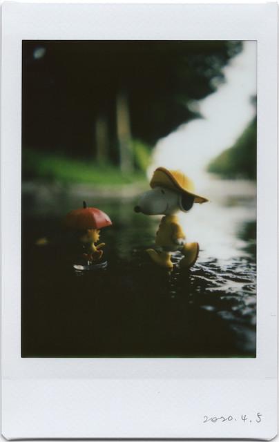 friends walking in rain