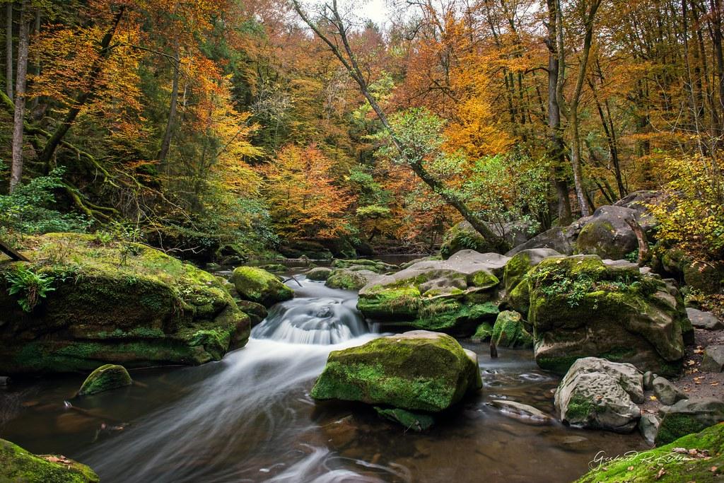 Eifel, the small river Prüm near Irrel in autumn