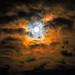"<p><a href=""https://www.flickr.com/people/152644485@N08/"">Andrzej Kocot</a> posted a photo:</p>  <p><a href=""https://www.flickr.com/photos/152644485@N08/49737956112/"" title=""Terra nova""><img src=""https://live.staticflickr.com/65535/49737956112_77f5765d32_m.jpg"" width=""240"" height=""158"" alt=""Terra nova"" /></a></p>  <p>Super Worm Moon 2020</p>"