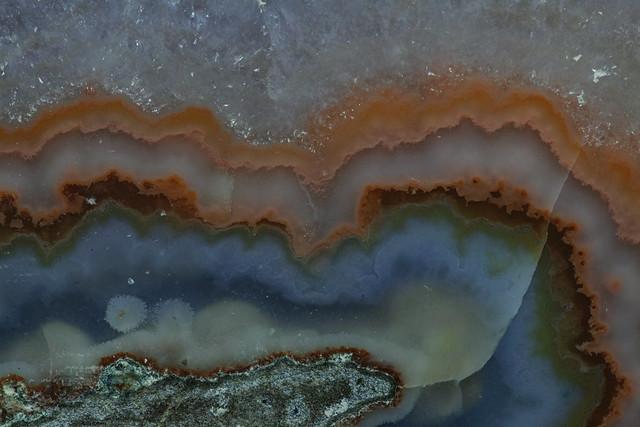 petrified layers