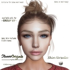 Skin applier for the GROUP VIP.