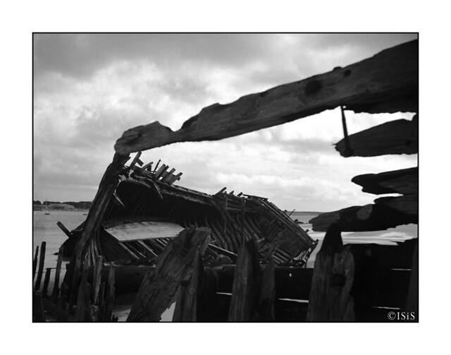 La flèche (Cimetière marin du Magouer, Plouhinec, Morbihan, Mars 2020)