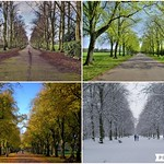 Haslam Park scenes over the seasons