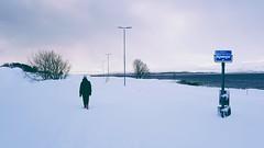 After snowfall V