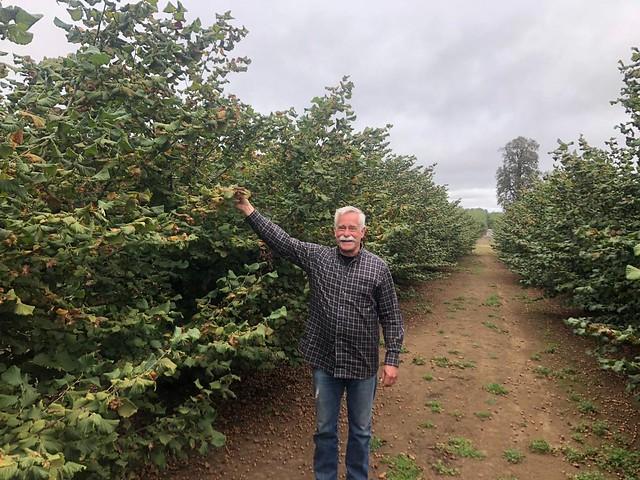 OrchardSam