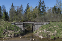 Neizmantotā Ventas-Priekules dzelzceļa tilts pār Kazbarupi, 05.05.2018.