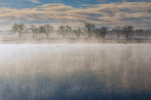 landscape lake water reflections clouds mist birds trees winter ladoralake rockymountainarsenalnationalwildlifereserve colorado landscapes