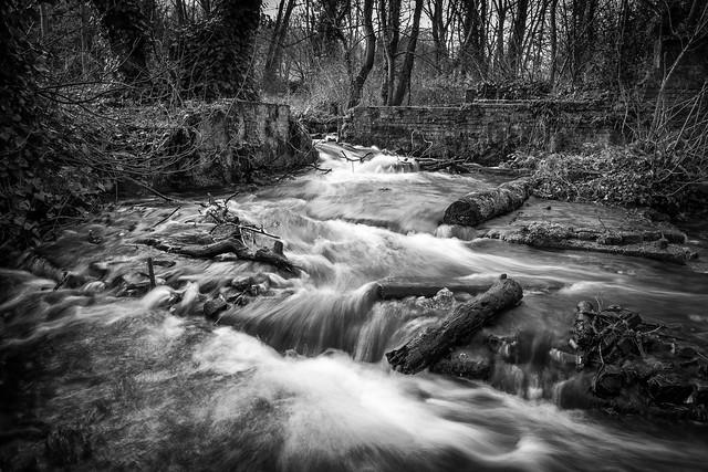 The River Dour, Kearsney Abbey