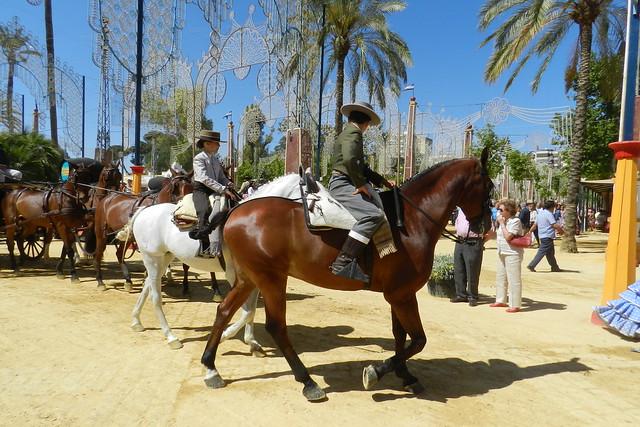 paseo desfile grupos de caballos y jinetes Parque González Hontoria Feria del Caballo 2014 Jerez de la Frontera Cadiz 03