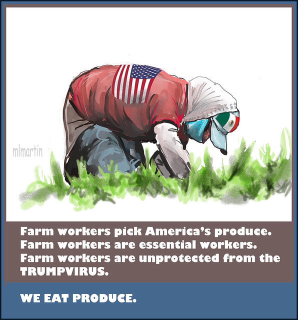 FARM WORKERS AND THE TRUMPVIRUS