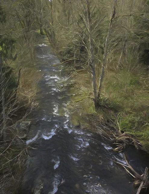 Griffin Creek