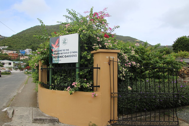 Visit to the Joseph Reynold O'Neal Botanic Gardens - Road Town, Tortola, British Virgin Islands from Port and from the Celebrity Equinox - February 19th, 2020