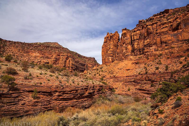 La Sal Creek Canyon