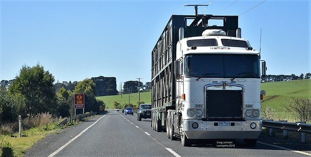 Livestock Kenworth on approach to Leongatha