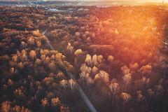Oakwood park | Kaunas aerial #96/365