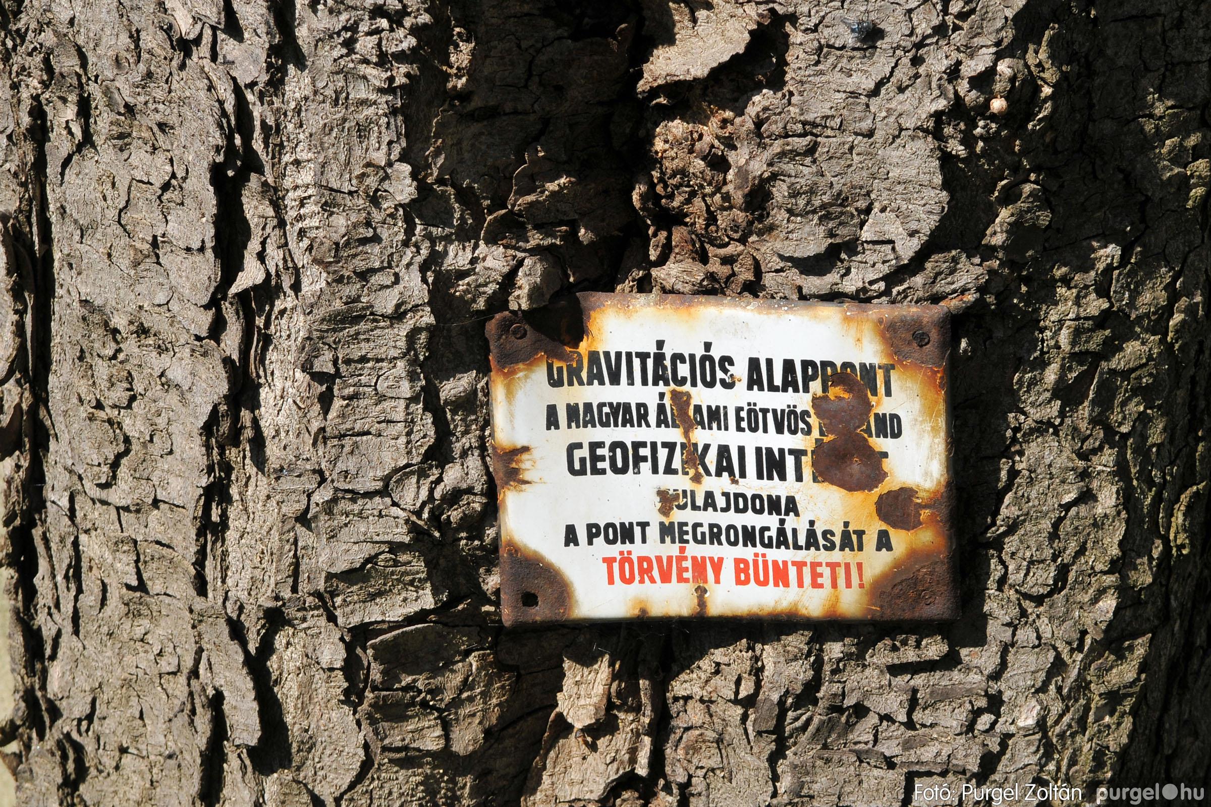 2020.04.03. 025 Szegváron járt a tavasz - Fotó:PURGEL ZOLTÁN© D3K_6649q.jpg