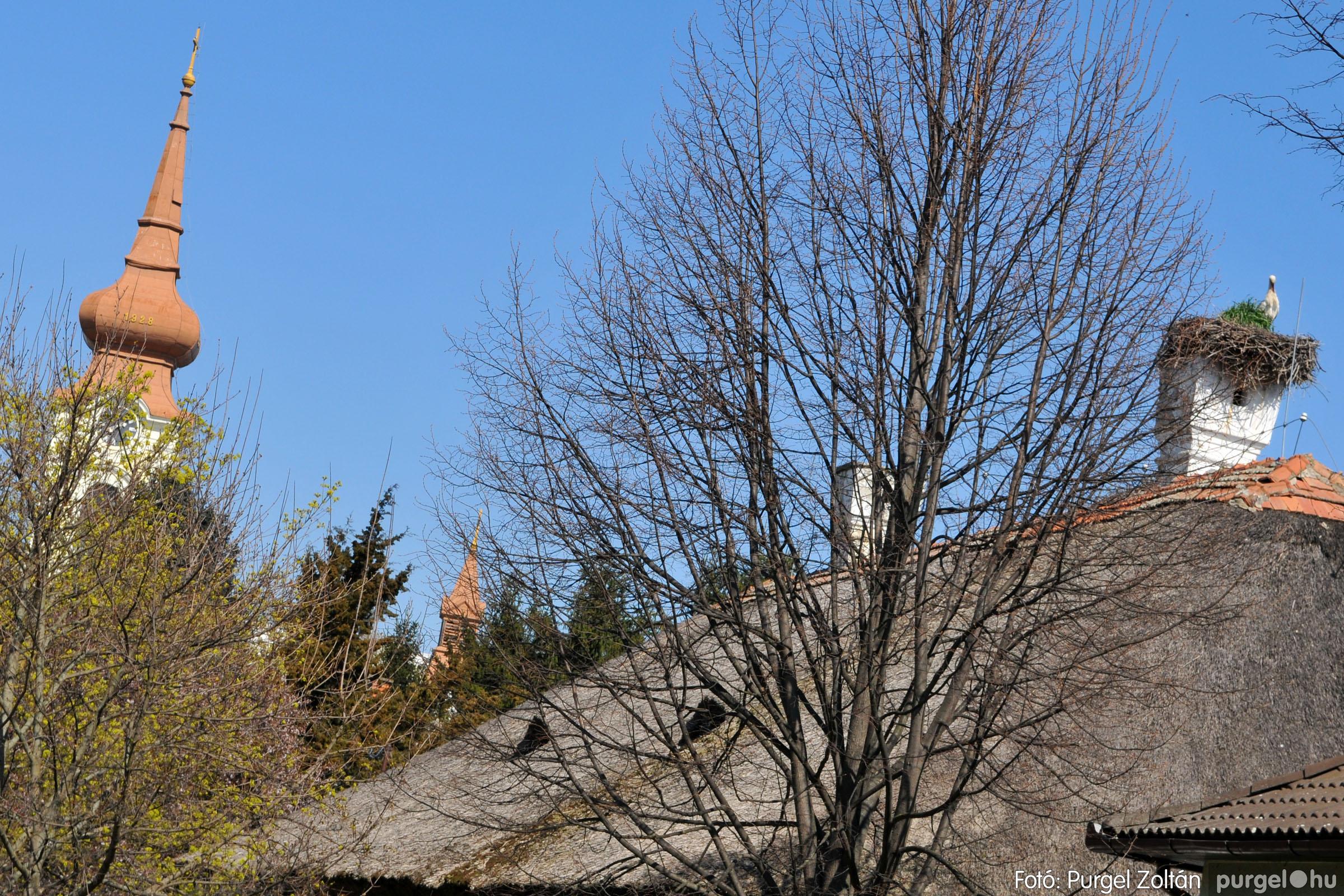 2020.04.03. 016 Szegváron járt a tavasz - Fotó:PURGEL ZOLTÁN© D3K_6631q.jpg