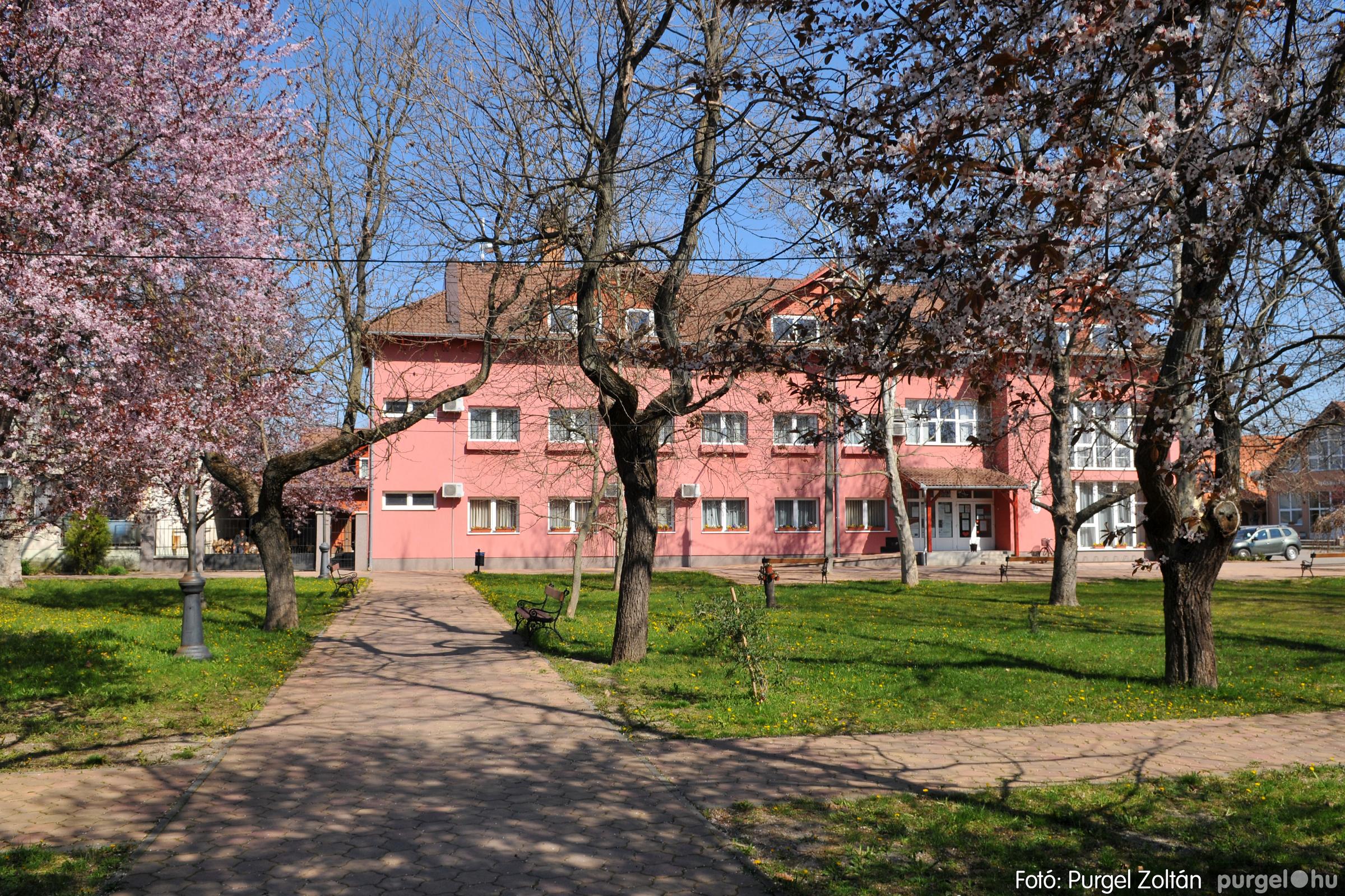 2020.04.03. 007 Szegváron járt a tavasz - Fotó:PURGEL ZOLTÁN© D3K_6608q.jpg