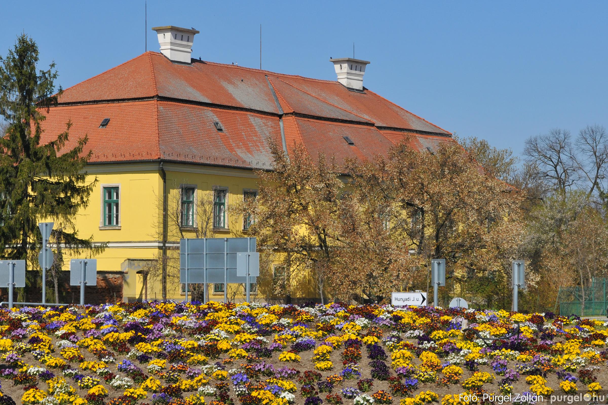 2020.04.03. 003 Szegváron járt a tavasz - Fotó:PURGEL ZOLTÁN© D3K_6600q.jpg
