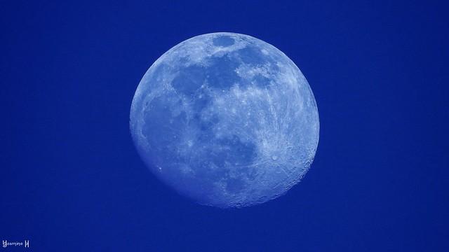Moon - 8262