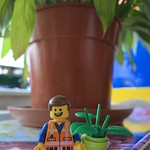 Emmet and Planty