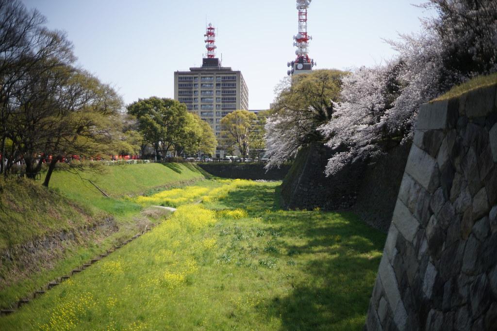 名古屋城_006