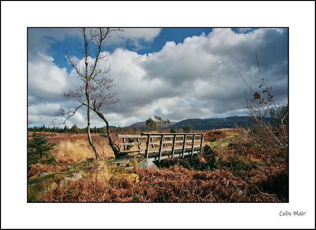 The Bridge Film - 2020-03-08th - Tamron 28-200mm, 28mm, Glentrool visitor centre, 1-250th sec, f8, hand held, 8m