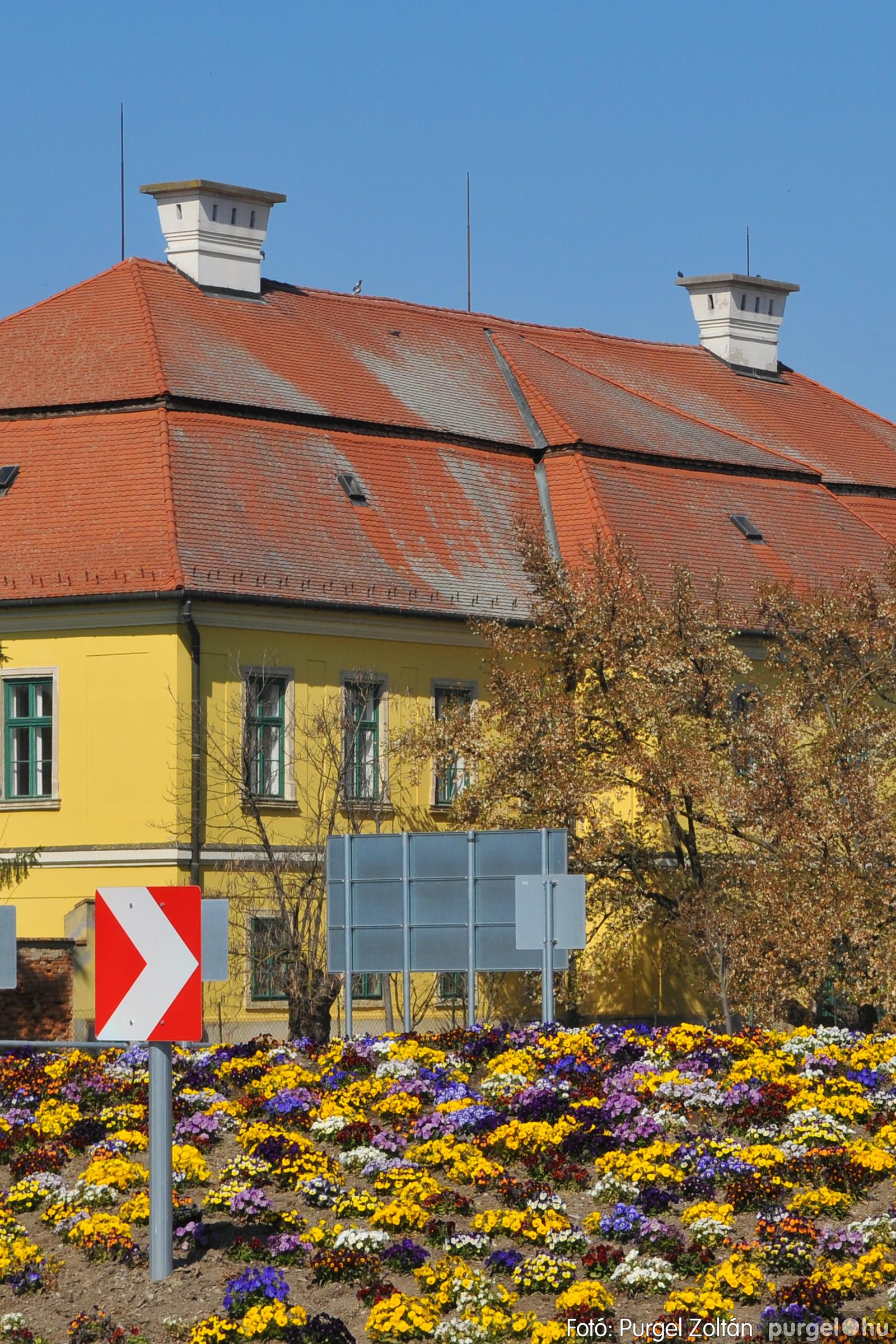 2020.04.03. 002 Szegváron járt a tavasz - Fotó:PURGEL ZOLTÁN© D3K_6598q.jpg