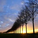 3. Aprill 2020 - 6:41 - Environ de Bresles - Oise