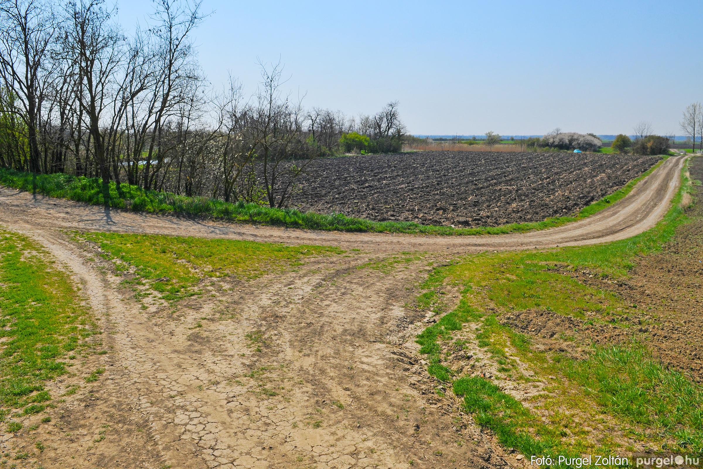 2020.04.04. 024 Száraz-zsilip és környéke - Fotó:PURGEL ZOLTÁN© D3K_6688q.jpg